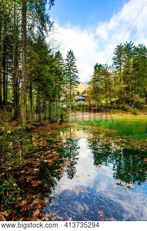 Picturesque shallow lake with glacial greenish water, covered with yellow and orange fallen leaves. Travel to Slovenia. Cloudy foggy autumn day. Julian Alps