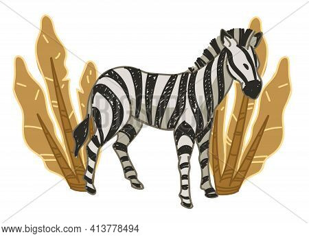 Wildlife Flora And Fauna, Zebra And Bushes Vector