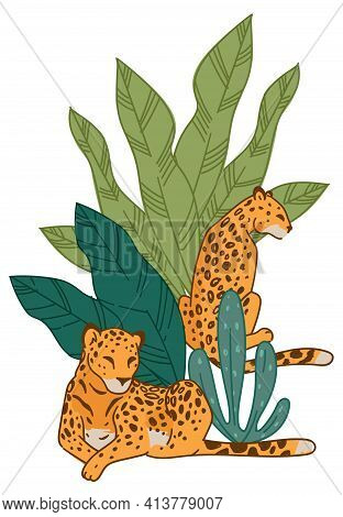 Leopard Animals In Natural Habitat Or Zoo Park