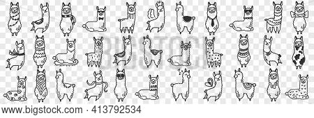 Funny Alpacas Animals Doodle Set. Collection Of Hand Drawn Various Funny Cute Alpaca Animals In Diff