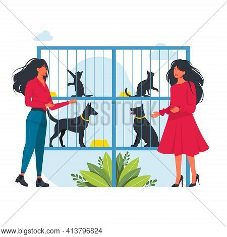 People Choose Animals At The Shelter. People Adopting Animals From Pet Shelter. Pet Shelter Or Anima