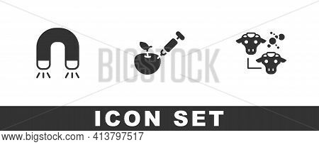 Set Magnet, Genetically Modified Apple And Cloning Icon. Vector