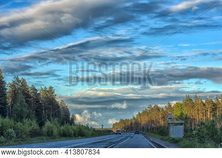 Motorway And Pine Forest In The Evening Sun In Summer