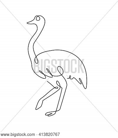 Emu Line Art. Australia Emu Bird In Outline Style. Ostrich One Line. Vector Continuous Line