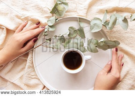 Female Hands Are Holding A Cup Of Coffee. White Backgrounds With Branches Of Eucalyptus. Floral Comp