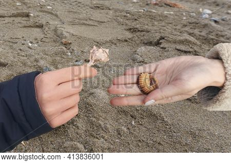 Two Hands With Seashells In The Palm, Outstretched To Each Other. One Shell Is Damaged. The Concept