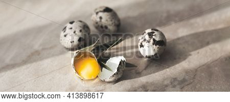 Whole And Broken Quail Eggs With Egg Yolk On Brown Stone Table Background With Shadow. Copy Space, F