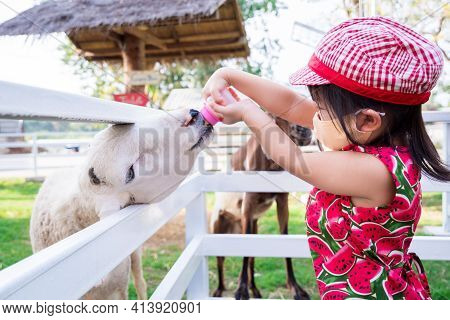 Girl Feeds The Animals In Zoo. Goats In White Fence Tried To Come Out Of Fence Eat Milk From Kid. Ch