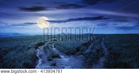 Path Through Green Grassy Mountain Meadow At Night. Beautiful Summer Landscape In Full Moon Light. F