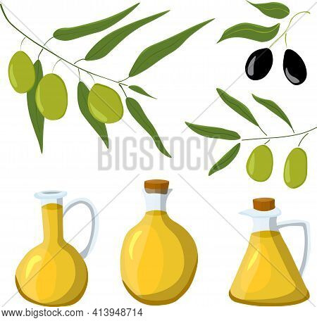 Olives Set Of Elements With Olive Branches And Fruits, And Olives Oil Bottles. Color Illustration In