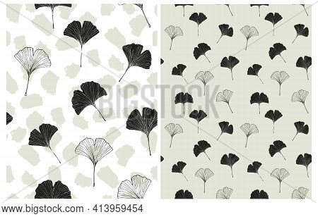 Hand Drawn Irregular Floral Vector Patterns With Black Sketched Ginkgo Biloba Leaves Isolated On A W