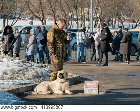 Moscow. Russia. March 24, 2021. A Man With A Dog Breed Turkmen Alabai On The City Street Asks For A