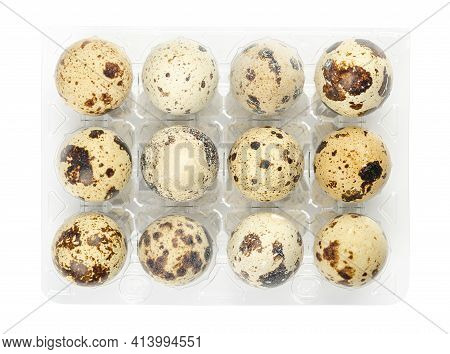 Group Of Twelve Fresh Quail Eggs In A Plastic Egg Carton, From Above, Isolated On White Background.