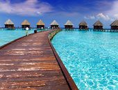 Island in ocean overwater villas. Landscape in a sunny day poster