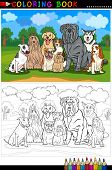 Cartoon Illustration of Funny Purebred Dogs like Bull Terrier Collie Bulldog Maltese Beagle Spaniel and Husky for Coloring Book or Coloring Page poster