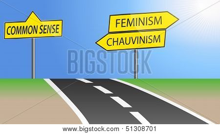 Feminism and chauvinism direction