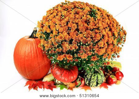 Decoration For Thanksgiving Day