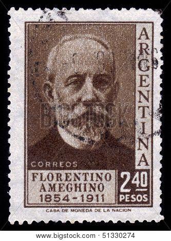 Florentino Ameghino, Anthropologist