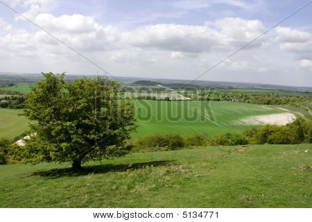 Birds Eye View Over Dunstable Downs