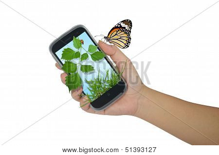Hand Holding Mobile With Nature