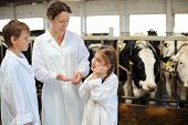Mother, son and little daughter talk in stall with many cows. poster