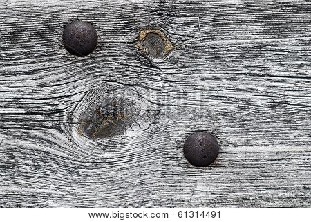 Screw and Wood