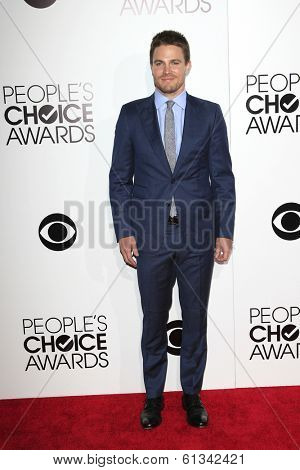 LOS ANGELES - JAN 8: Stephen Amell at The People's Choice Awards at the Nokia Theater L.A. Live on January 8, 2014 in Los Angeles, California