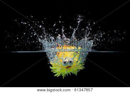 Toy Fish Splash