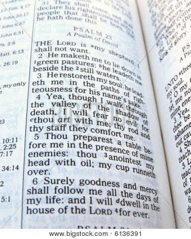 Psalm 23 Bible, Shepherd