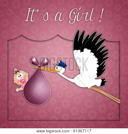 Stork Delivering Newborn Girl