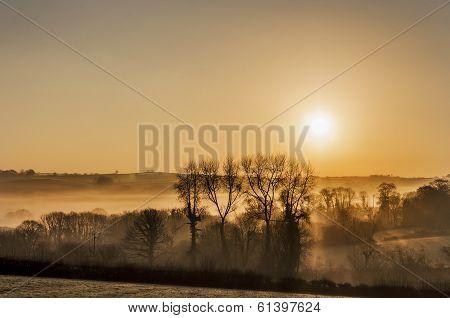 Misty golden cornish sunrise