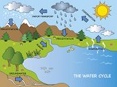 a illustration of funny cartoon water cycle poster