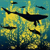 Background illustration with a school of sharks hunting through underwater vegitation poster