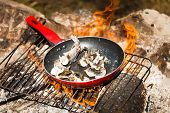 Small Trouts Cooking in the Pan on a Campfire poster