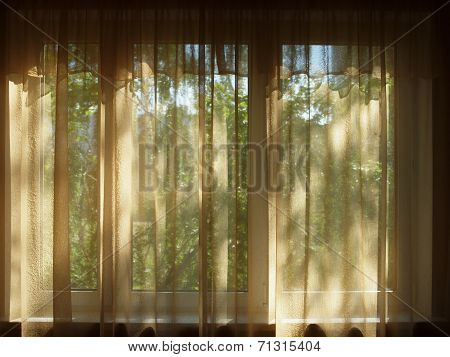 Curtained Window In A Dark Room, A View Of The Green Trees.