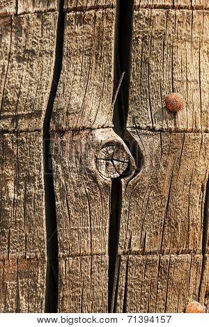 Old Wood With Hobnails Closeup