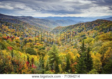 Dawn in the Smoky Mountains National Park, Tennessee, USA. poster
