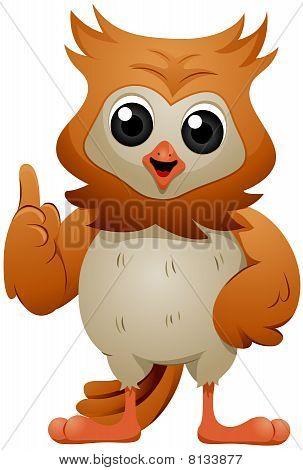 Talking Owl