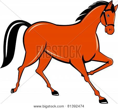 Horse Cantering Side Cartoon