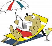 Vector cartoon of happy dog relaxing on deckchair with newspaper and drink. poster
