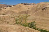 Del Puerto Canyon creek through dry summer hills near Patterson California poster