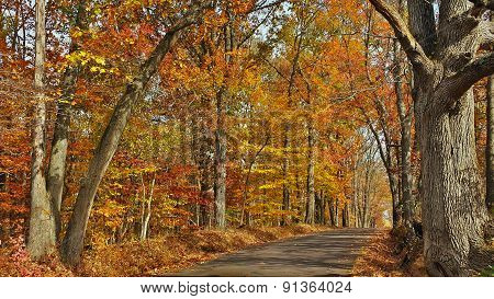 Fall Scenic Byway in Bucks County, Pennsylvania