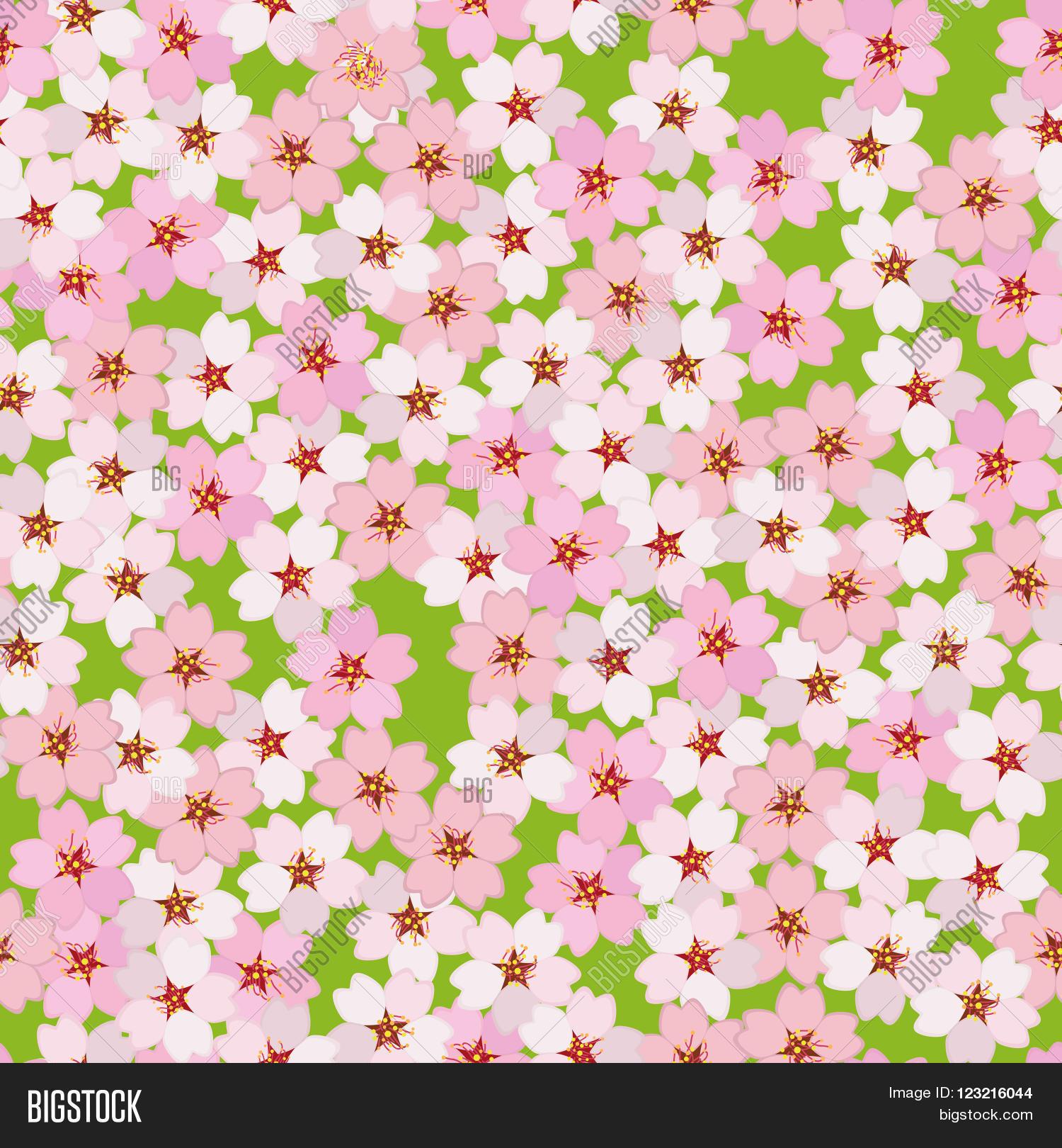 Cherry Blossom Vector Photo Free Trial Bigstock