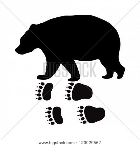 Wild beer animal black silhouette and wild animal predator symbol. Predator silhouette. Wild life black animal silhouette. Black silhouette wild animal zoo vector.