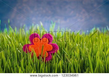 Felt flower in green grass, spring concept
