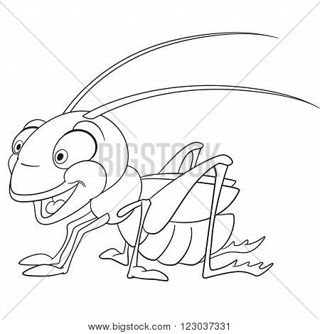 cute and funny smiling cartoon grasshopper (locust katydid) isolated on a white background