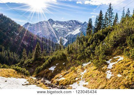 Ammergauer Hochplatte alps alpen bavaria tirol hiking ** Note: Visible grain at 100%, best at smaller sizes