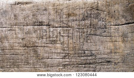 Grunge wooden background. Weathered wooden board texture photo. Close-up of old rustic cracked texture.