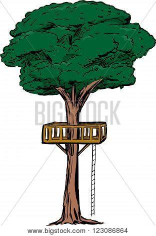 Isolated Tree With Treehouse Ladder