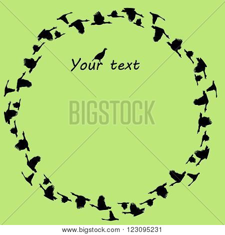 Vector circular background with silhouettes flying geese